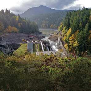 Photo of Elwha River after dam removal