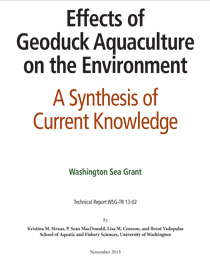 effects-of-geoduck-aquaculture-on-the-environment
