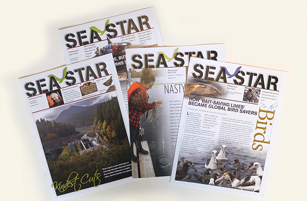 WSG Sea Star Newsletter