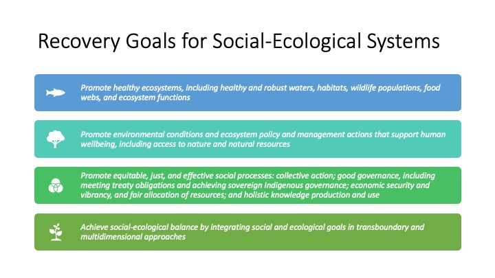 Recovery Goals for Social-Ecological Systems