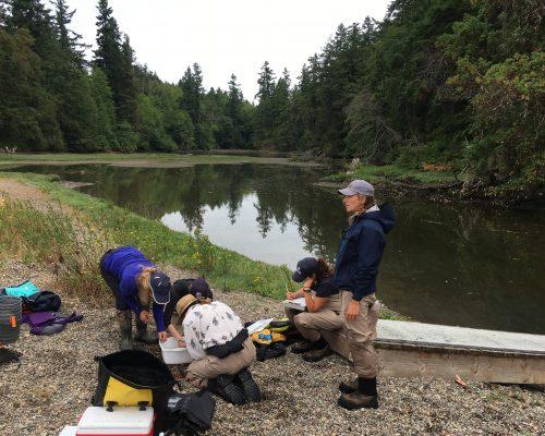 DNR staff working at Anderson Island. Photo: Kelly Martin