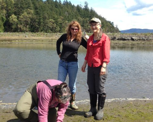 Barbara, Sarka, and Lisa launched the first Crab Team site on Orcas Island in April. Photo: Emily Grason