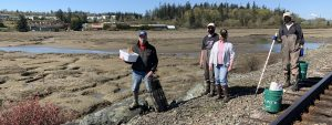 A team of four volunteers with masks stands socially-distanced and carrying equipment for monitoring. The Swinomish casino marsh is in the background.