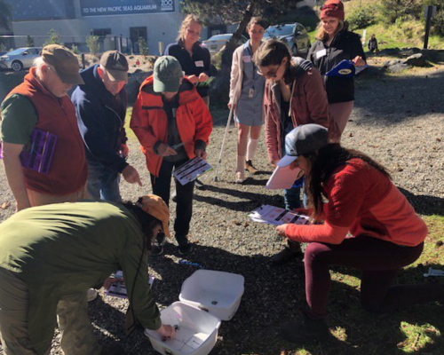 New Volunteer Crab Team Training and Point Defiance Zoo & Aquarium