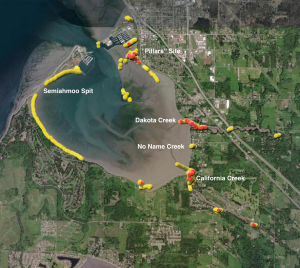 Satellite imagery of Drayton harbor showing yellow dots mostly around inside edge of harbor, with clusters of red dots in north Pillars site, at the mouth of Dakota and California creeks and at two sites further upstream in California creek.