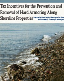 Removal of Hard Armoring Along Shoreline Properties cover image