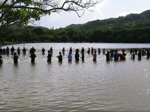A community gathered at a Hawaiian loko iʻa (fishpond) to learn about indigenous aquaculture practices and collaborative efforts.