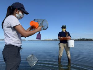 Malise Yun left, holds an open minnow trap looking at the contents. Further back to the right, Lindsey Parker holds a clipboard and bucket. Both are standing in ankle deep water on a tideflat.