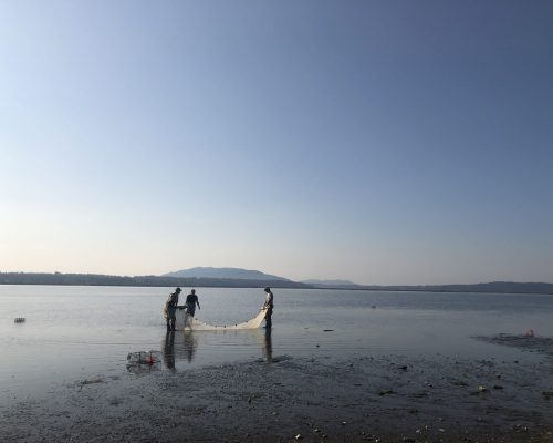 Sean McDonald and partners check seine net for catch. Photo credit: Emily Grason