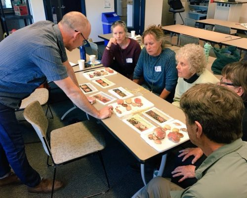 Sean and volunteers at our Kitsap return volunteer training brushing up on their crab ID skills.