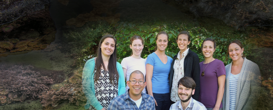 Welcome Six New Hershman Fellows