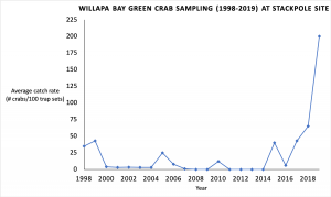 Graph showing up and down populations of green crabs until dramatic increase in  2017.