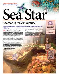 Autumn 2006 Sea Star
