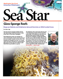 Autumn 2007 Sea Star