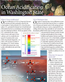 Ocean acidification in the Washington State