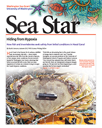 Winter 2012 Sea Star