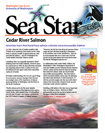 Spring 2007 Sea Star