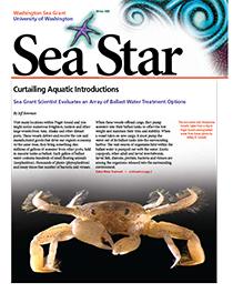 Winter 2008 Sea Star