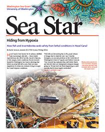 Winter 2012 Sea Star